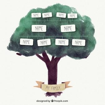 árbol genealógico de acuarela con cajas de texto