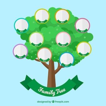 Árbol verde con círculos para los miembros de la familia
