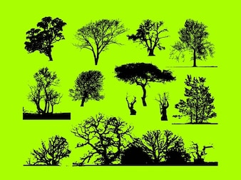 árboles forestales gráficos vectoriales recorte