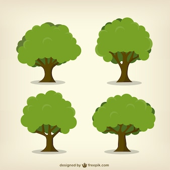 Árboles frondosos