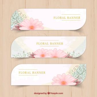 Banderas florales paquete