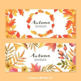 Banners bonitos de naturaleza otoñal