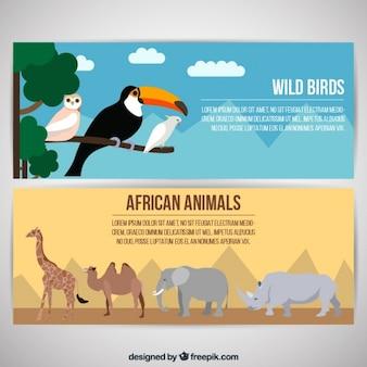 Banners de animales africanos y pájaros salvajes
