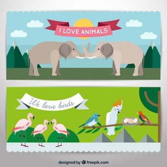 Banners de animales salvajes y pájaros exóticos en diseño plano