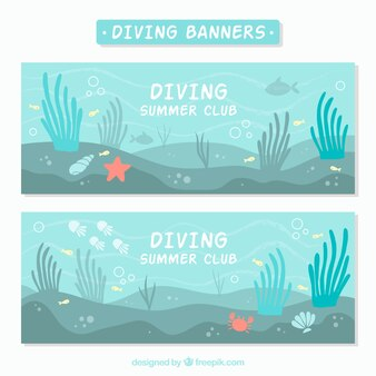 Banners de fondo marino