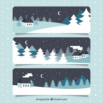 Banners de noche de invierno
