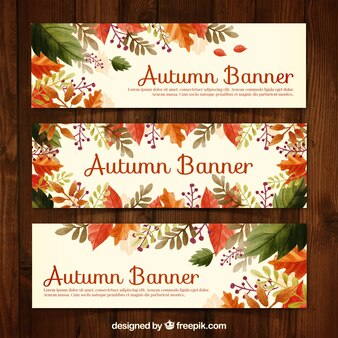 Banners de otoño floridos