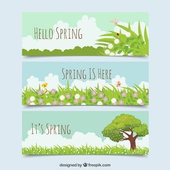 Banners primaverales bonitos con cesped