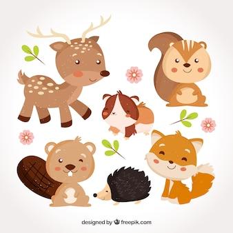 Bebés de animales dulces sonriendo