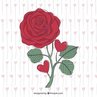 Bella rosa roja dibujada a mano