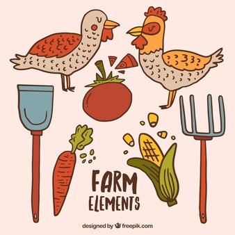 Bocetos de animales de granja y elementos