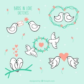 Bocetos de pájaros enamorados