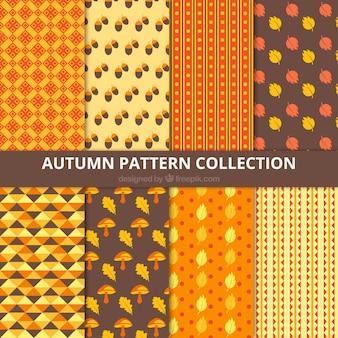 Bonita colección de patrones otoñales