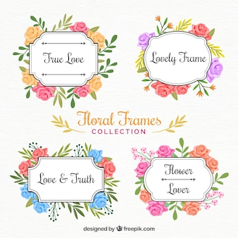 Bonita selección de marcos de flores pintados con acuarelas