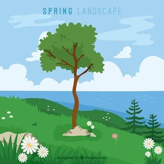 Bonito campo primaveral