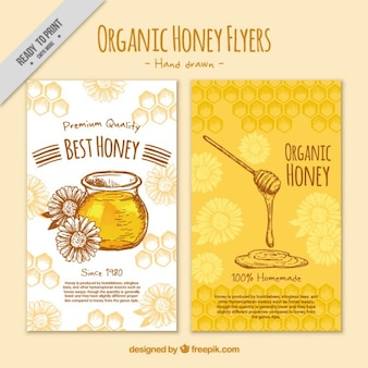 Bonito folleto de miel dibujado a mano