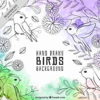 Bonito fondo de pájaros dibujados a mano con manchas de acuarela