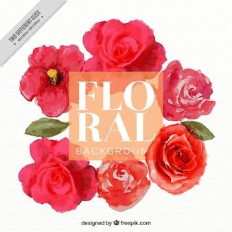 Bonito fondo de rosas de acuarela