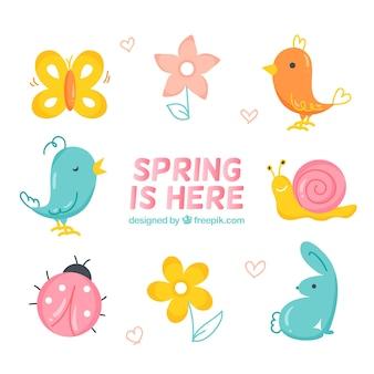 Bonitos elementos de primavera