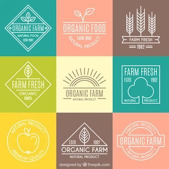 Bonitos logos ecológicos con contorno para granja