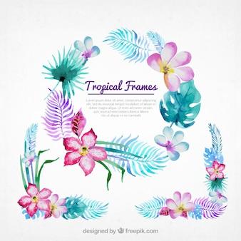 Bonitos marcos florales de acuarela