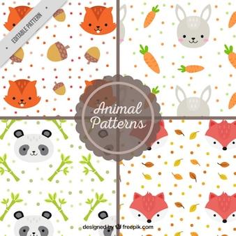 Bonitos patrones de adorables animales