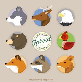 Bonitos perfiles de animales del bosque