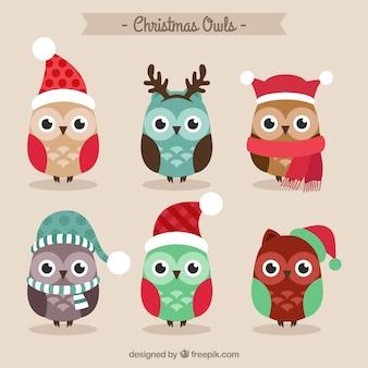 Búhos lindos de navidad