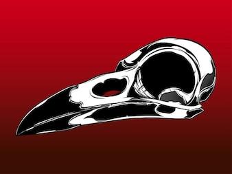 Cabeza de ave muerta