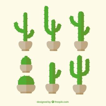 Cactus verdes en diseño plano