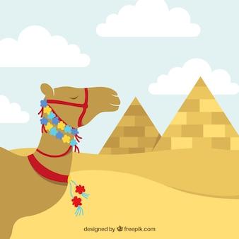 Camello egipcio con la decoración floral