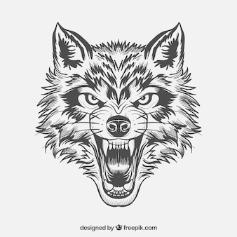 Cara de lobo fiero