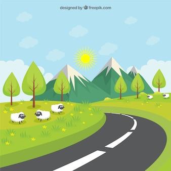 Carretera a través del prado verde
