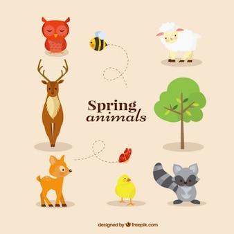 Colección de animales en primavera