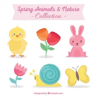 Colección de animales y naturaleza de primavera