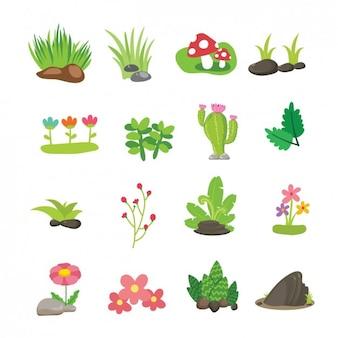 Colección de flores y ramas