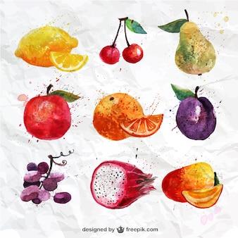 Colección de frutas pintadas a mano