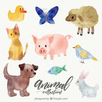 Colección adorable de animales en acuarela
