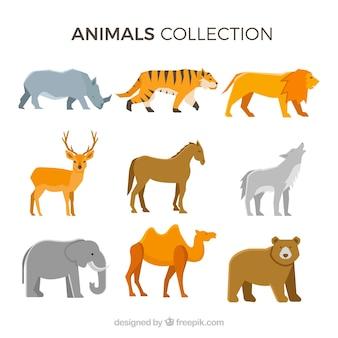 Colección clásica de animales con diseño plano