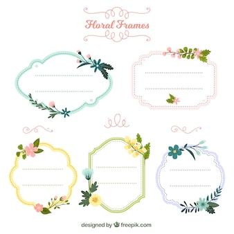 Colección colorida de marcos  florales