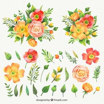 Colección de acuarela de flores bonitas