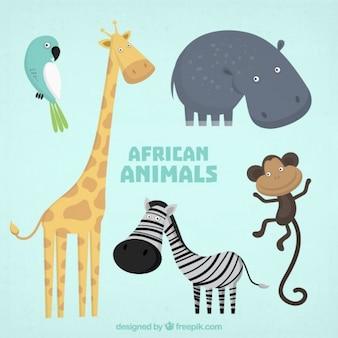 Colección de adorables animales salvajes