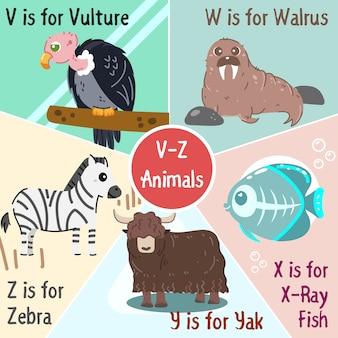 Colección de animales de la v a la z