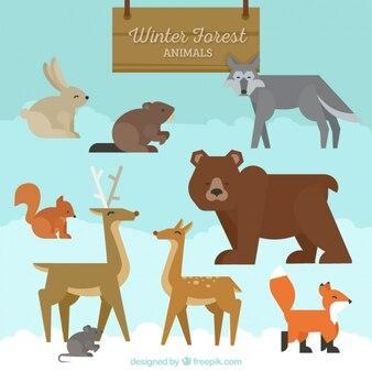Colección de animales del bosque en estilo geométrico