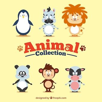 Colección de animales divertidos de dibujos animados