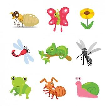 Colección de animales e insectos coloridos
