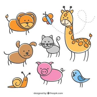 Colección de animales ilustrados