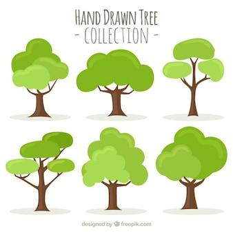 Colección de árboles dibujados a mano