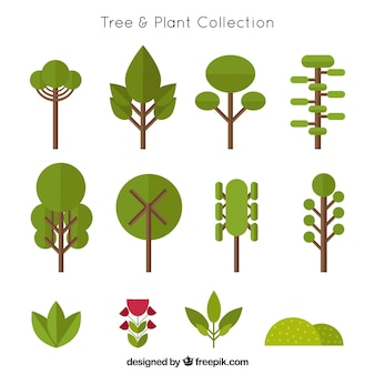 Colección de árboles en diseño plano y arbustos