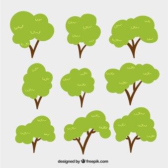 Arboles frondosos fotos y vectores gratis for Ver fotos de arboles de hoja perenne